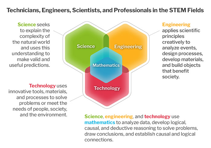 Technicians, Engineers, Scientists, and Professionals in the STEM Fields